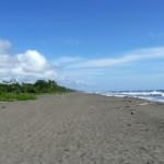 El Parque Nacional Tortuguero en Costa Rica