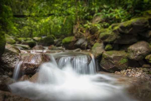 Parque Nacional Chagres en Panamá